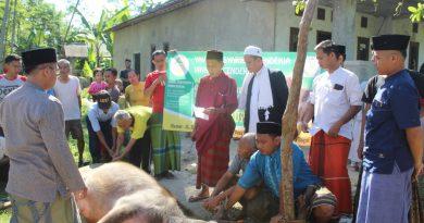 Hari Raya Idul Adha, Lembaga Pendidikan Cendikia Kurban Kerbau dan Domba
