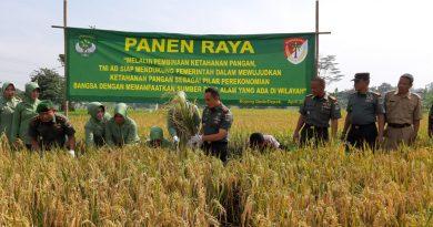Pemkab Bogor dan Kodim 0508 Depok Panen Padi Bersama